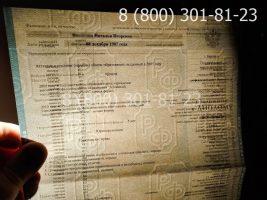 Диплом бакалавра 2010-2011 годов, старого образца (заполненный), титульный лист на просвет-2