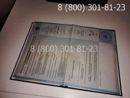 Диплом бакалавра 2010-2011 годов, старого образца (заполненный), приложение-1
