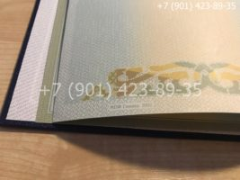Диплом бакалавра 2004-2009 годов, старого образца, титульный лист-2