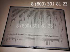 Диплом магистра 1997-2003 годов, старого образца (заполненный), приложение-2
