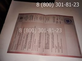 Диплом техникума 2004-2006 годов, старого образца (заполненный), приложение-1