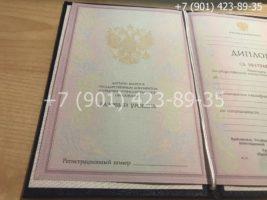 Диплом техникума 2004-2006 годов, старого образца, титульный лист-1