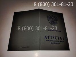 Аттестат 11 класс 1994-2006 годов, старого образца (заполненный), обложка