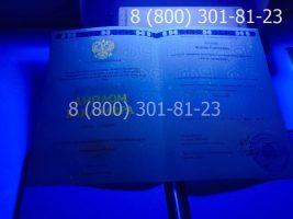 Диплом бакалавра 2014-2020 годов с заполнением, титульный лист под УФ лампой-2