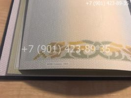 Диплом специалиста 2002-2008 годов, старого образца, титульный лист-3