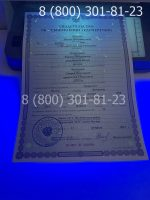 Свидетельство об усыновлении с заполнением, бланк под УФ лампой