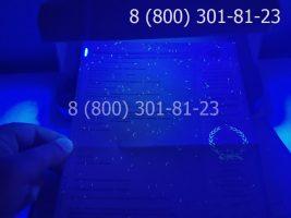 Диплом магистра 2004-2009 годов, старого образца (заполненный), приложение под УФ лампой