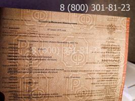 Диплом техникума 2004-2006 годов, старого образца (заполненный), приложение на просвет