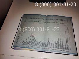Диплом магистра 2010-2011 годов, старого образца (заполненный), приложение-2
