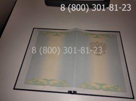 Диплом магистра 2010-2011 годов, старого образца (заполненный), обложка-2