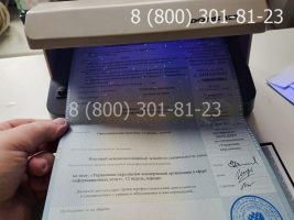 Диплом магистра 2011-2013 годов, старого образца (заполненный), приложение под УФ лампой