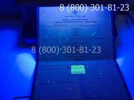 Диплом техникума 2011-2013 годов, старого образца (заполненный), приложение под УФ лампой