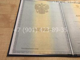 Диплом бакалавра 2011-2013 годов, старого образца, титульный лист-1
