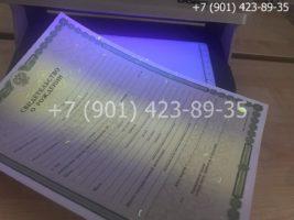 Свидетельство о рождении, бланк под УФ лампой