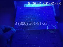 Диплом магистра 2010-2011 годов, старого образца (заполненный), приложение под УФ лампой