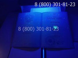 Диплом бакалавра 2010-2011 годов, старого образца (заполненный), титульный лист под УФ лампой-2