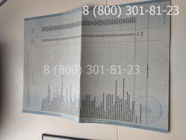 Диплом магистра 2011-2013 годов, старого образца (заполненный), приложение-2