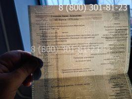 Диплом специалиста 2011-2013 годов (заполенный), приложение на просвет