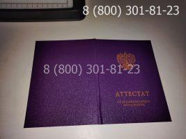 Аттестат 9 класс 2014-2020 годов, нового образца (заполненный), обложка