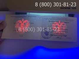 Диплом кандидата наук нового образца (заполненный), приложение под УФ лампой-2