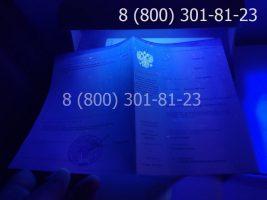Диплом колледжа 2014-2020 годов с заполнением, приложение под УФ лампой