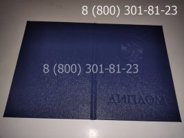Диплом техникума 1997-2003 годов с заполнением, обложка-1