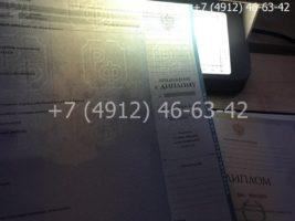 Диплом бакалавра 2010-2011 годов, образец, приложение