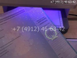 Диплом магистра 2009-2011 годов, образец, приложение под УФ лампой