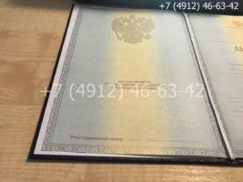 Диплом магистра 2011-2013 годов, образец, титульный лист-2