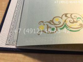 Диплом магистра 2011-2013 годов, образец, титульный лист-3