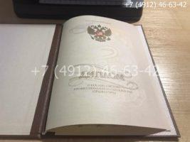 Диплом о послевузовском профессиональном образовании, ординатура, образец, титульный лист-2