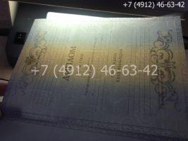 Диплом специалиста 2011-2013 годов, старого образца, титульный лист-3