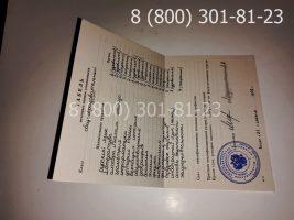 Аттестат 11 класс 1994-2006 годов с заполнением, приложение-2