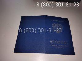 Аттестат 11 класс 2007-2009 годов с заполнением, обложка