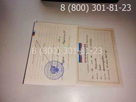 Аттестат 11 класс 2007-2009 годов с заполнением, приложение-1