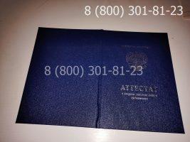 Аттестат 11 класс 2010-2013 годов, с заполнением, обложка-1
