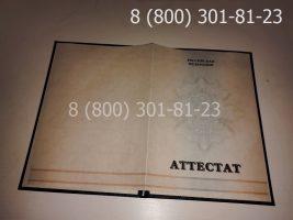Аттестат 11 класс 2010-2013 годов, с заполнением, титульный лист-1