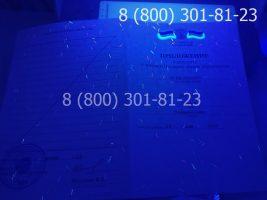 Аттестат 11 класс 2010-2013 годов, с заполнением, приложение под УФ лампой
