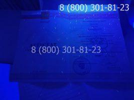 Аттестат 11 класс 2010-2013 годов, с заполнением, титульный лист под УФ лампой-2