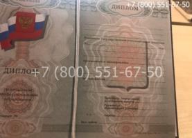 Диплом ПТУ 2008-2014 годов, образец, титульный лист-2