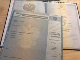 Диплом бакалавра 2010-2011 годов, образец, титульный лист и приложение