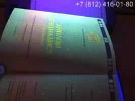 Диплом специалиста с отличием с 2014 года, образец, титульный лист под УФ лампой