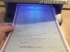 Свидетельство об усыновлении, образец, бланк под УФ лампой