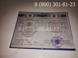 Диплом техникума 2011-2013 годов с заполнением, титульный лист-2