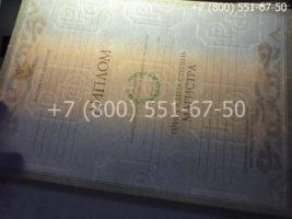 Диплом магистра 2004-2009 годов, образец, титульный лист-4