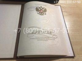Диплом о послевузовском профессиональном образовании, интернатура, образец, титульный лист-2