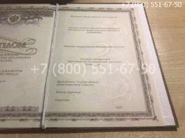 Диплом о послевузовском профессиональном образовании, интернатура, образец, титульный лист-4