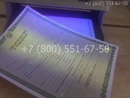Свидетельство о рождении, образец, бланк под УФ лампой