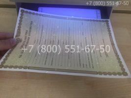 Свидетельство об установлении отцовства, образец, бланк под УФ лампой