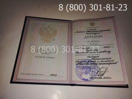 Диплом колледжа 1997-2003 годов с заполнением, титульный лист-2